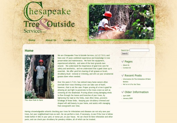Chesapeake Tree and Outside Service
